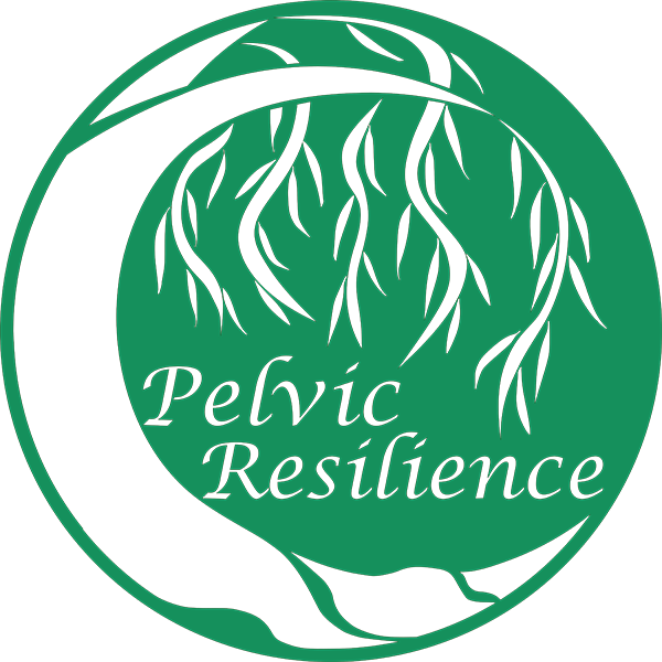 Pelvic Resilience: A holistic approach to maternal wellness, pelvic health, and persistent pain.